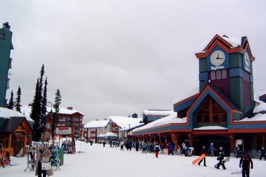 Ski Shuttles