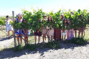 fun-in-the-vineyards-1