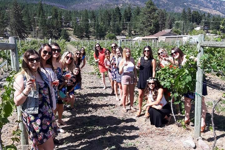 more-fun-in-the-vineyards