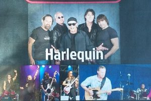 Harlequin with Say High and Altimate Club